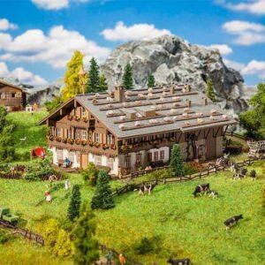 Großer Alpenhof mit Scheune