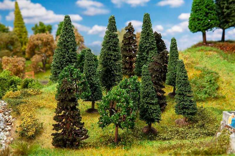 15 Mischwaldbäume