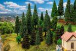30 Mischwaldbäume