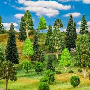 50 Mischwaldbäume