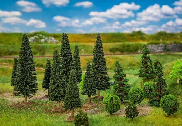 25 Mischwaldbäume