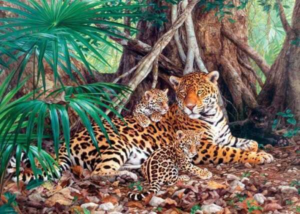 Jaguars in the jungle - Puzzle - 3000 Teile