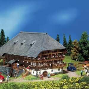 Schwarzwald-Hof